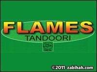 Flames Tandoori