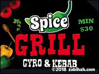 Spice Gyro & Kabab